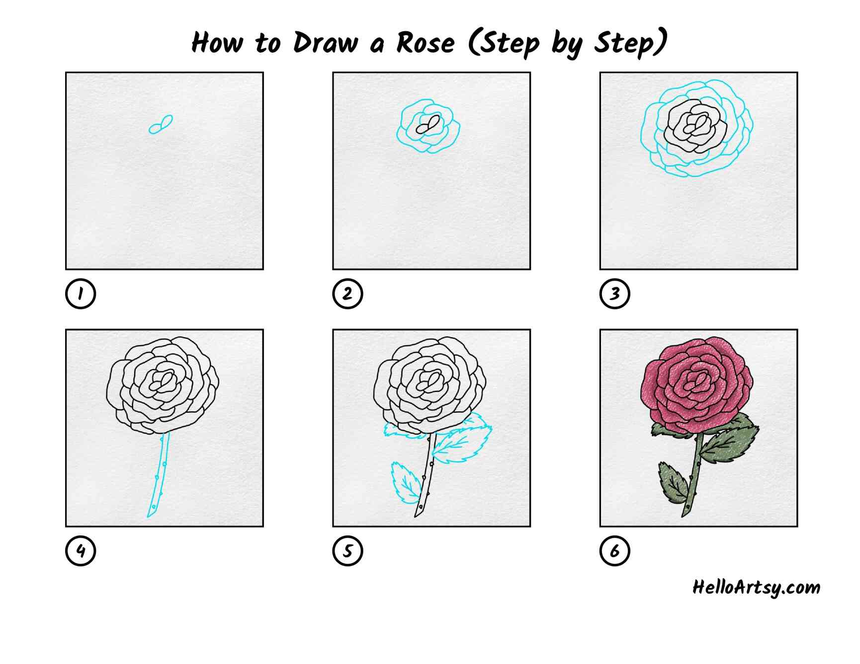 How To Draw A Rose Step By Step: All Steps