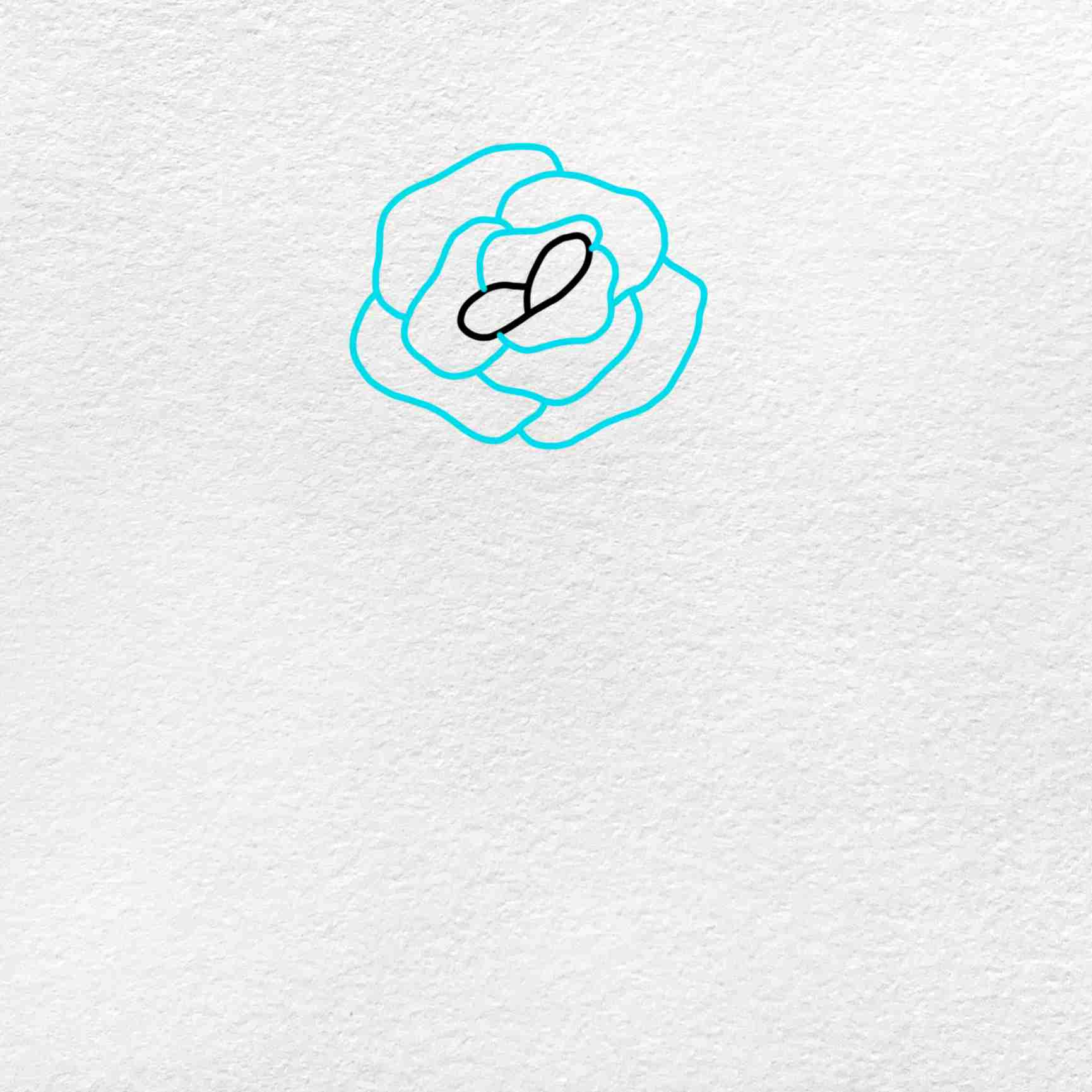 How To Draw A Rose Step By Step: Step 2
