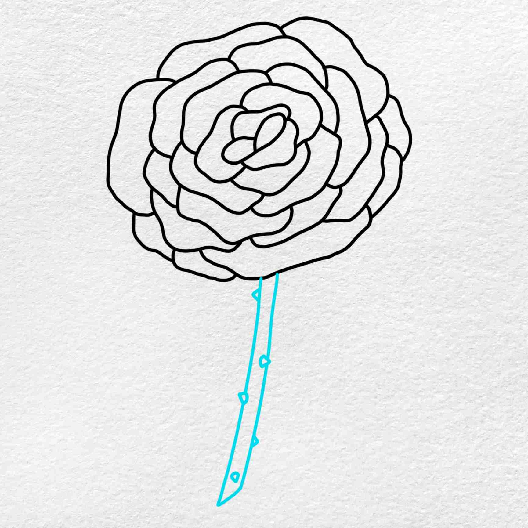 How To Draw A Rose Step By Step: Step 4