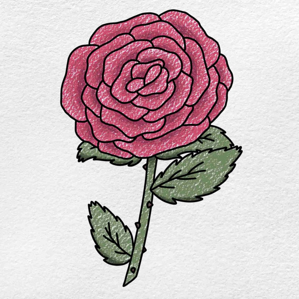 How To Draw A Rose Step By Step: Step 6