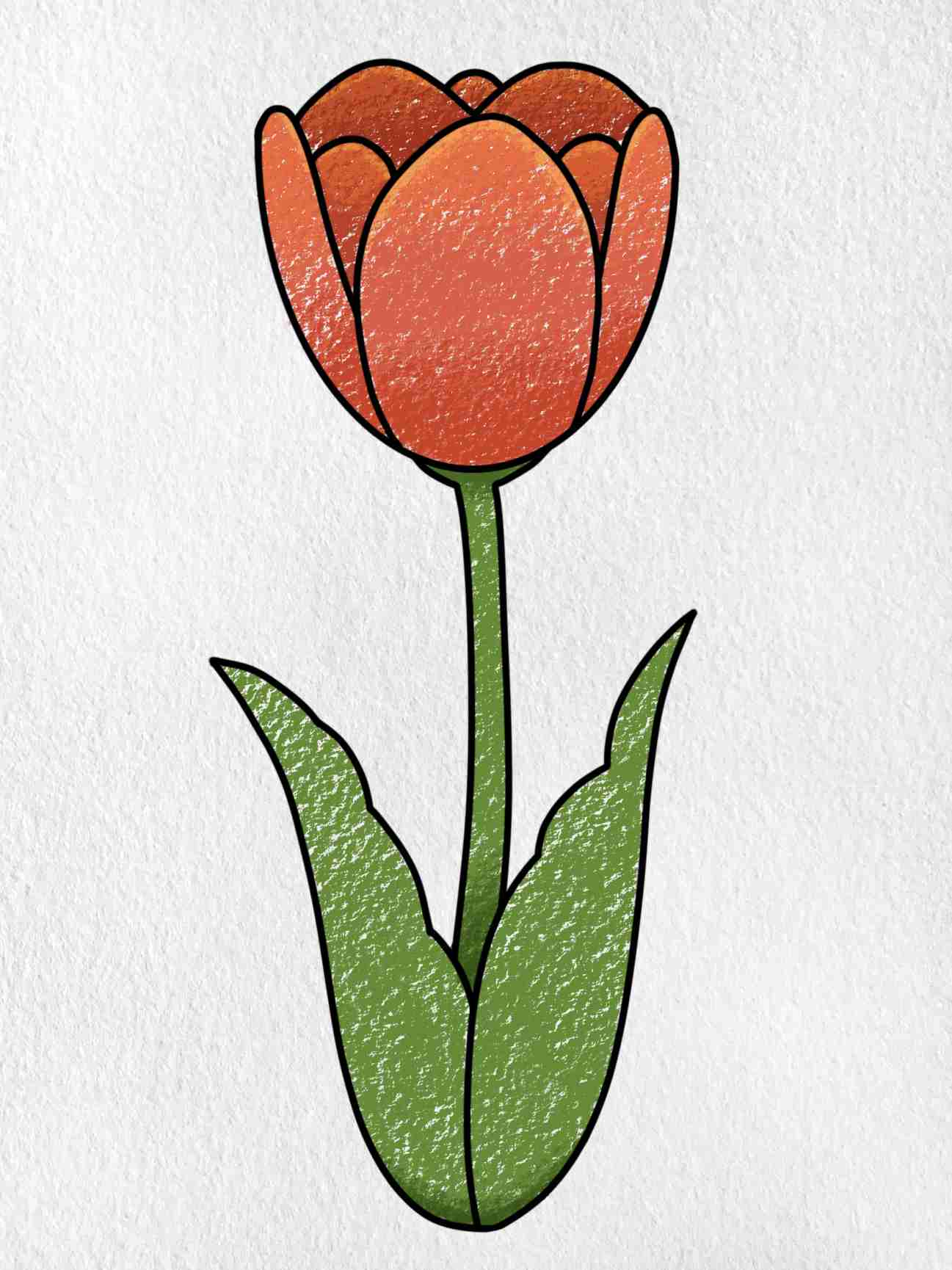 How To Draw A Tulip: Step 6