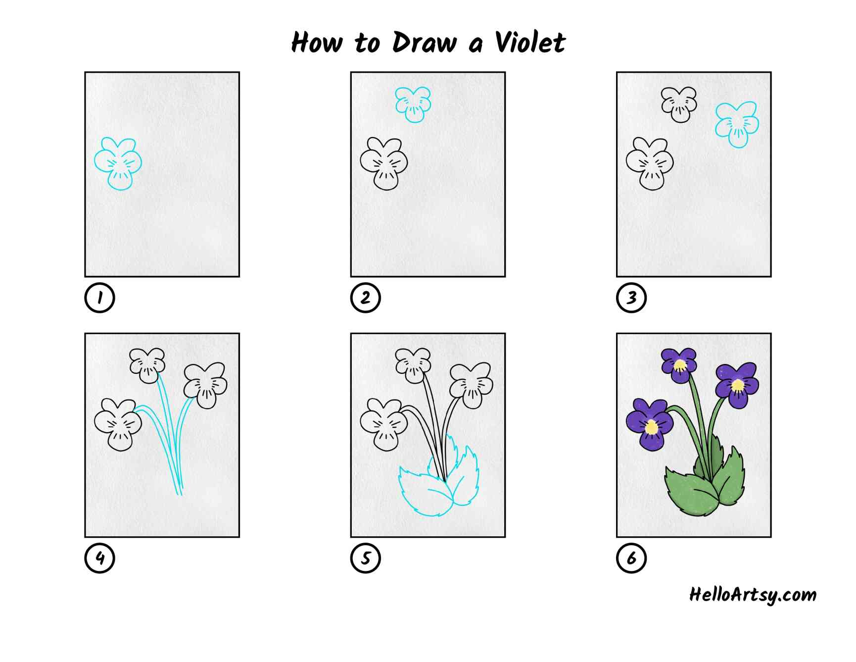 How To Draw A Violet: All Steps