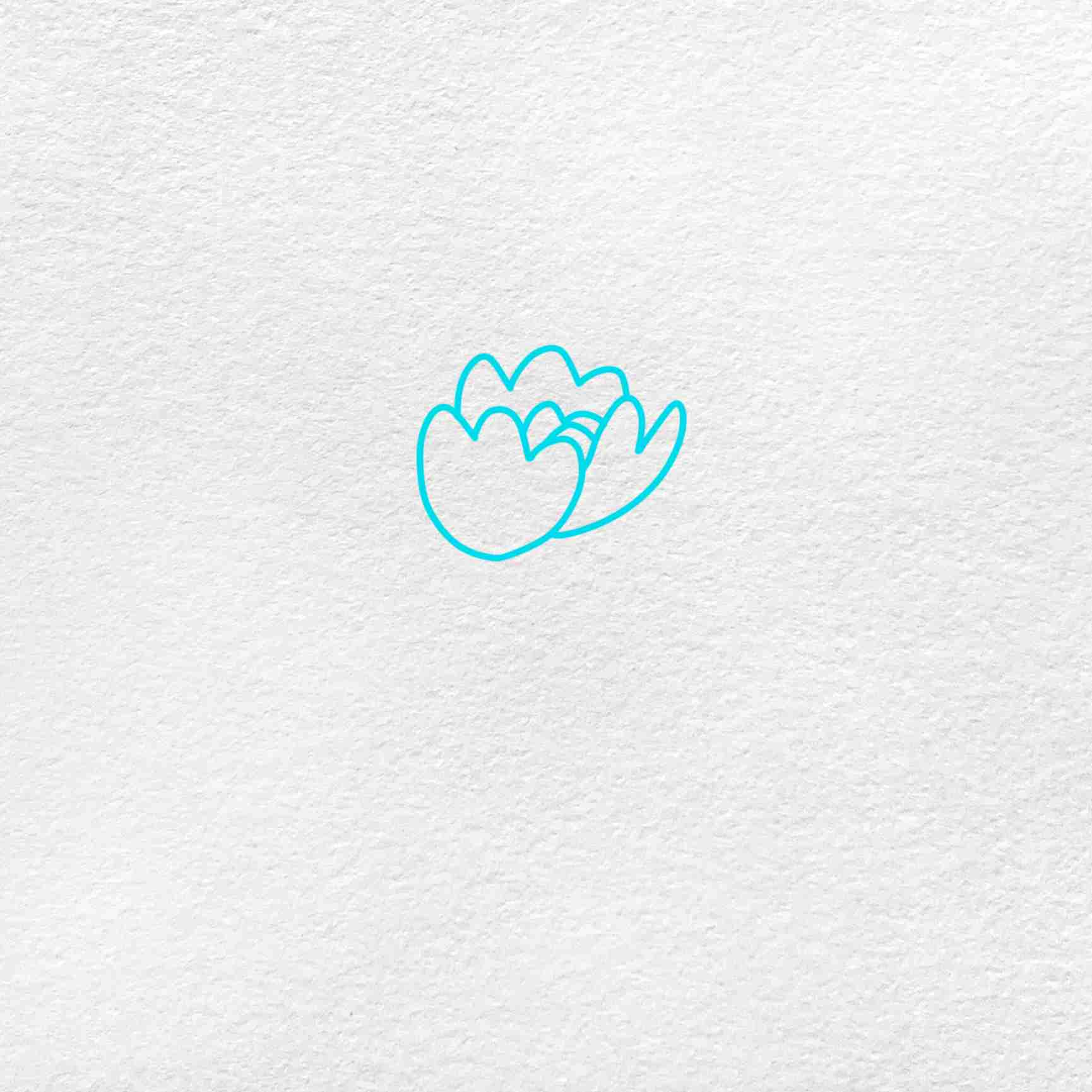 How To Draw Peony: Step 1