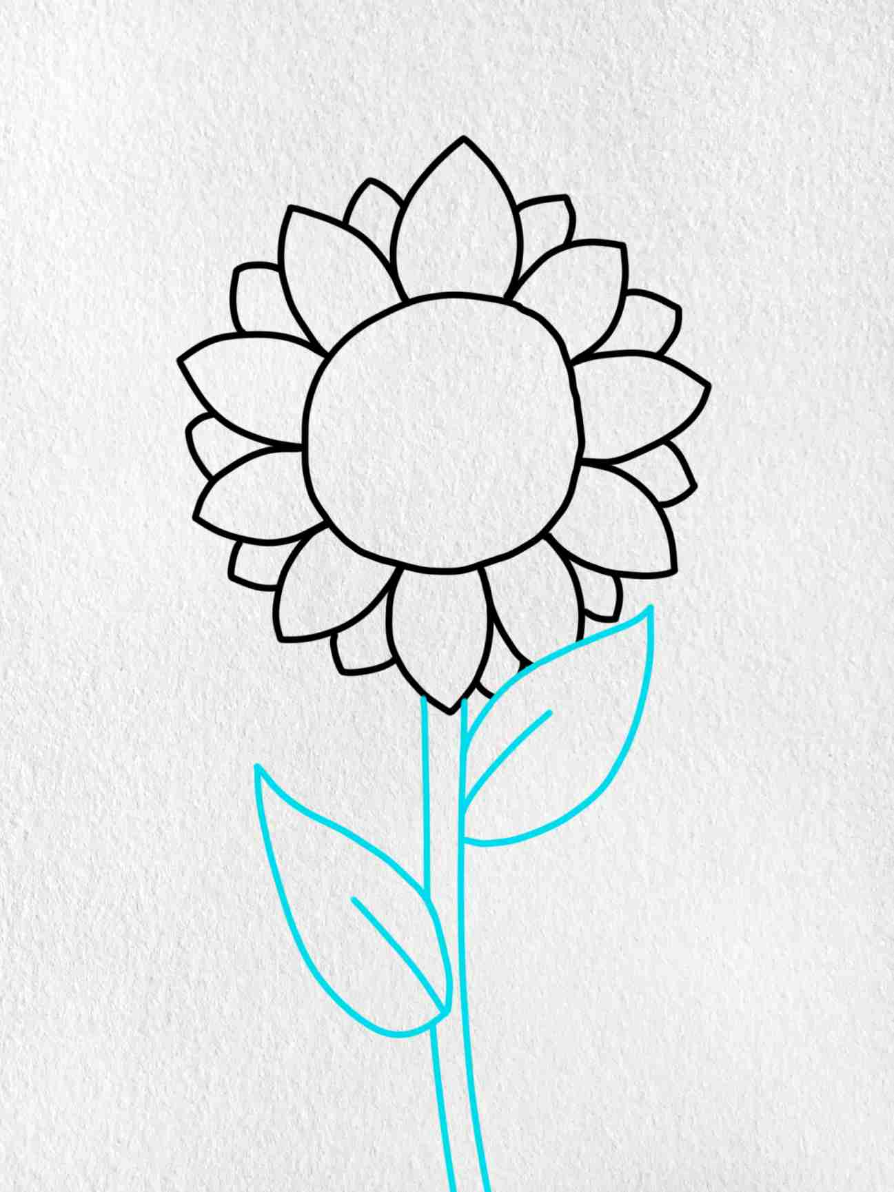 How To Draw Sunflowers: Step 3