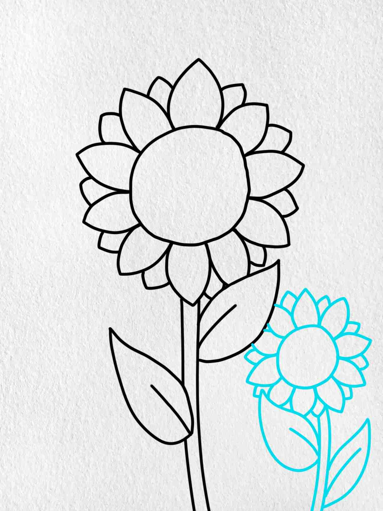 How To Draw Sunflowers: Step 4