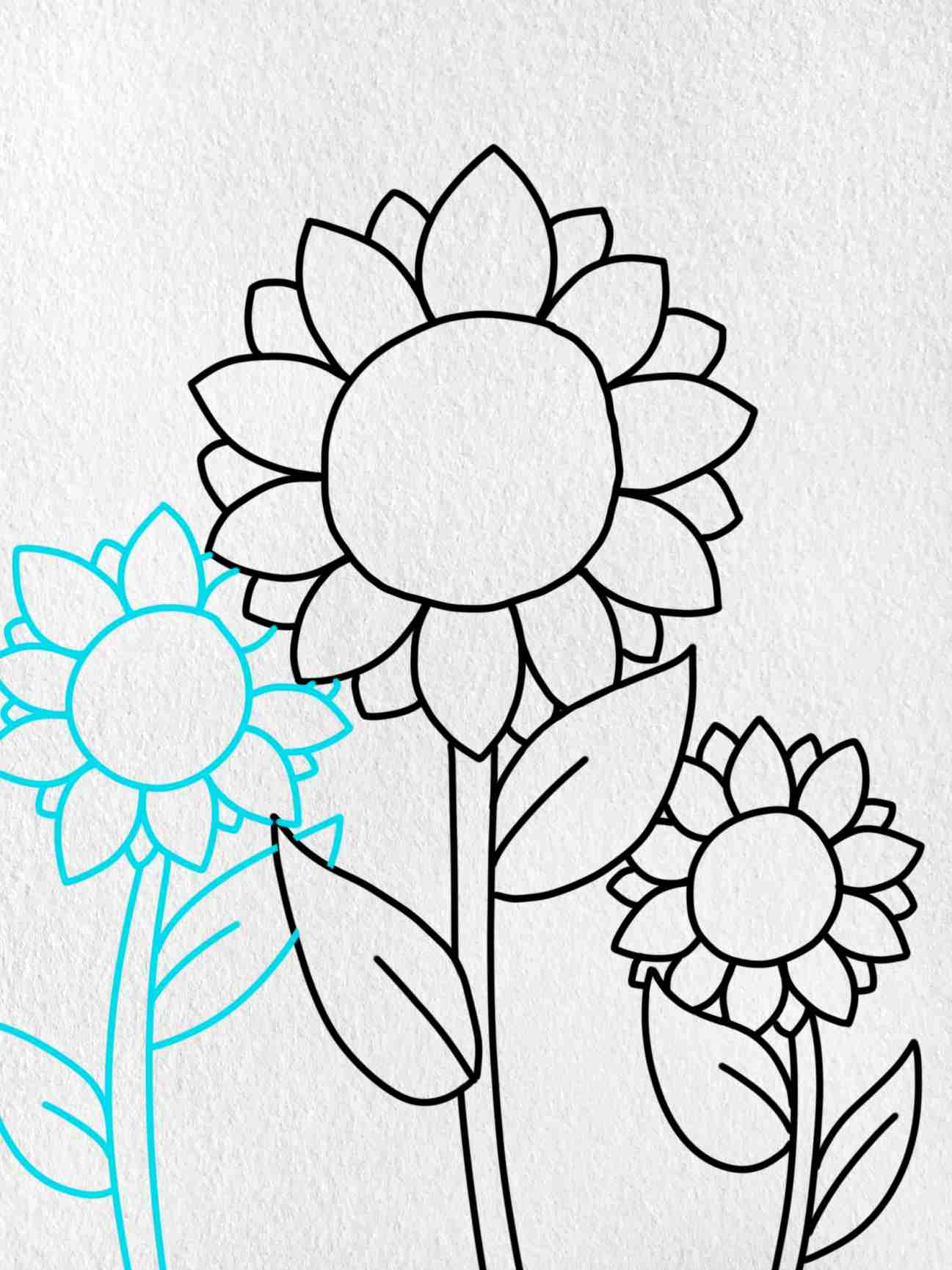 How To Draw Sunflowers: Step 5