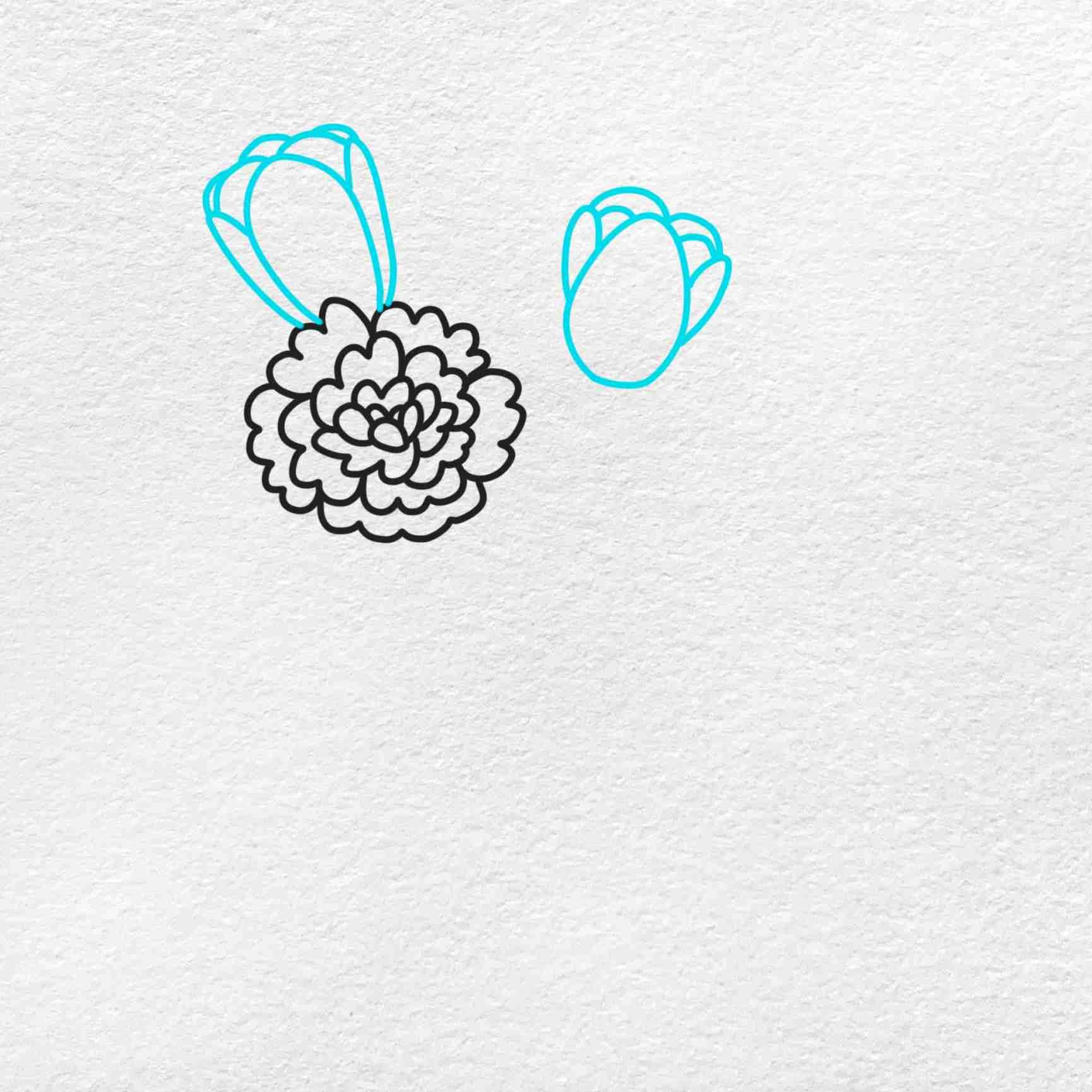 Spring Flowers Drawing: Step 2