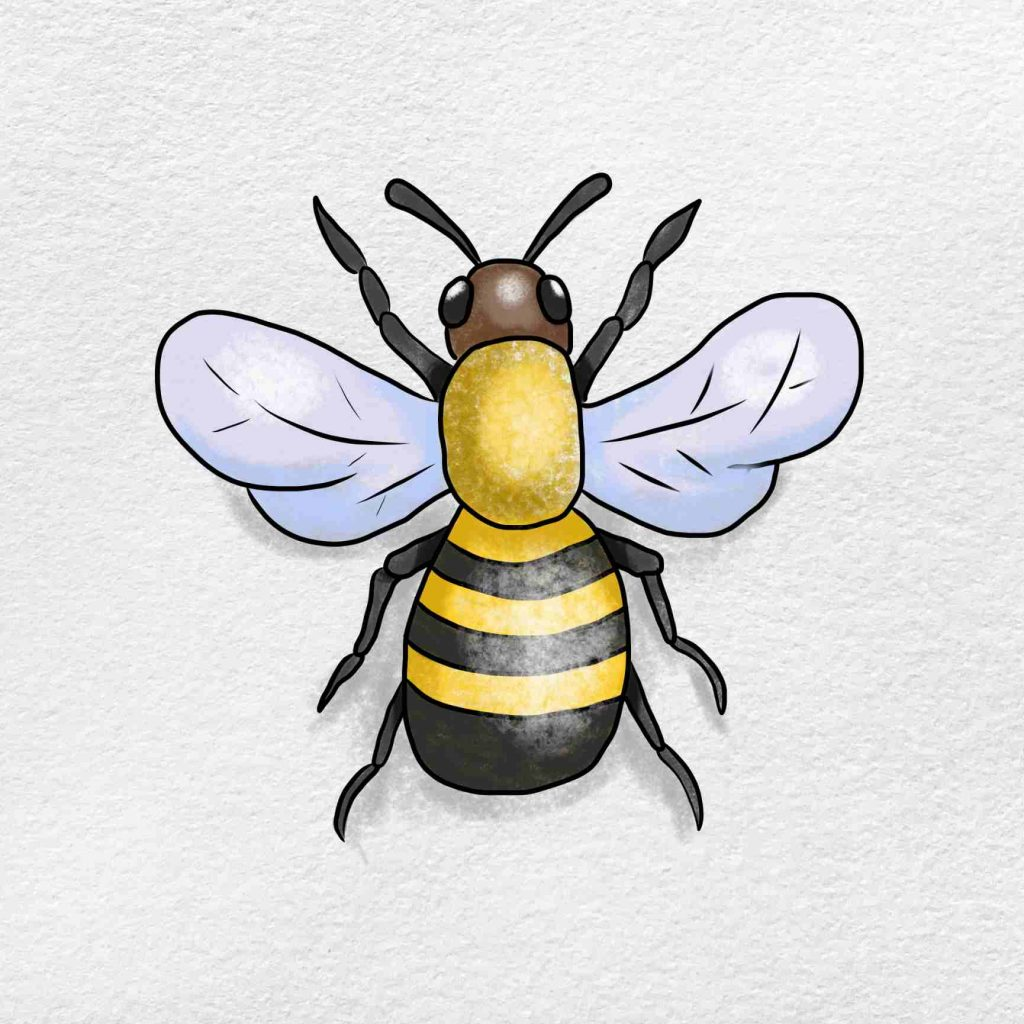 How To Draw A Bumblebee: Step 6