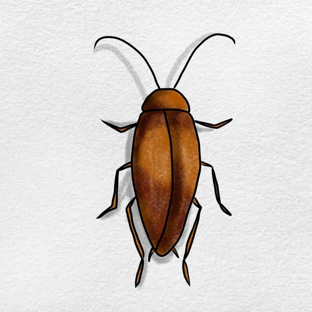 How To Draw A Cockroach: Step 6