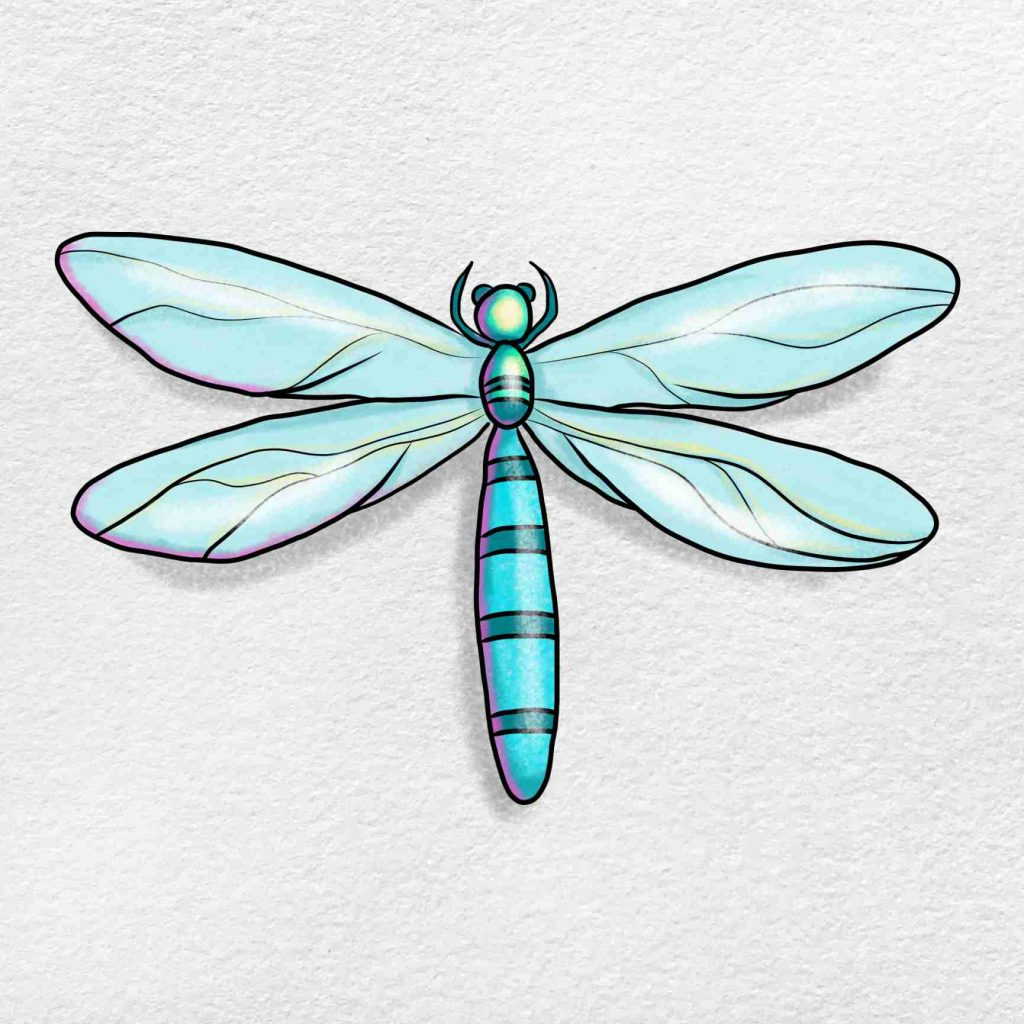 How To Draw A Dragonfly: Step 6