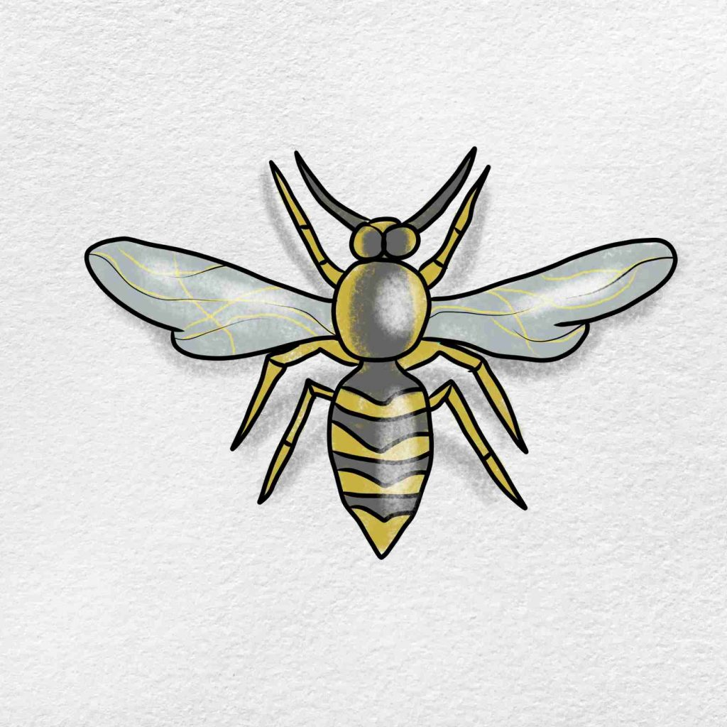 How To Draw A Wasp: Step 6