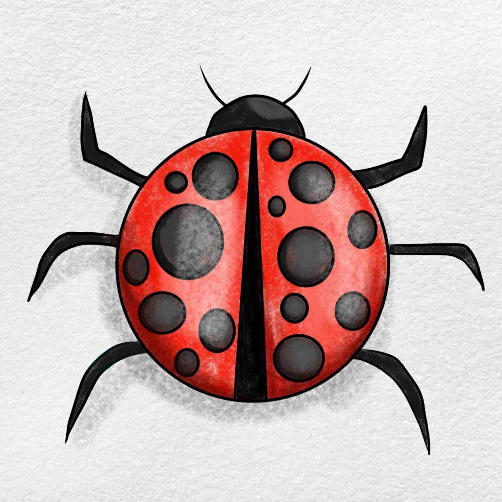 Ladybug Drawing: Step 6