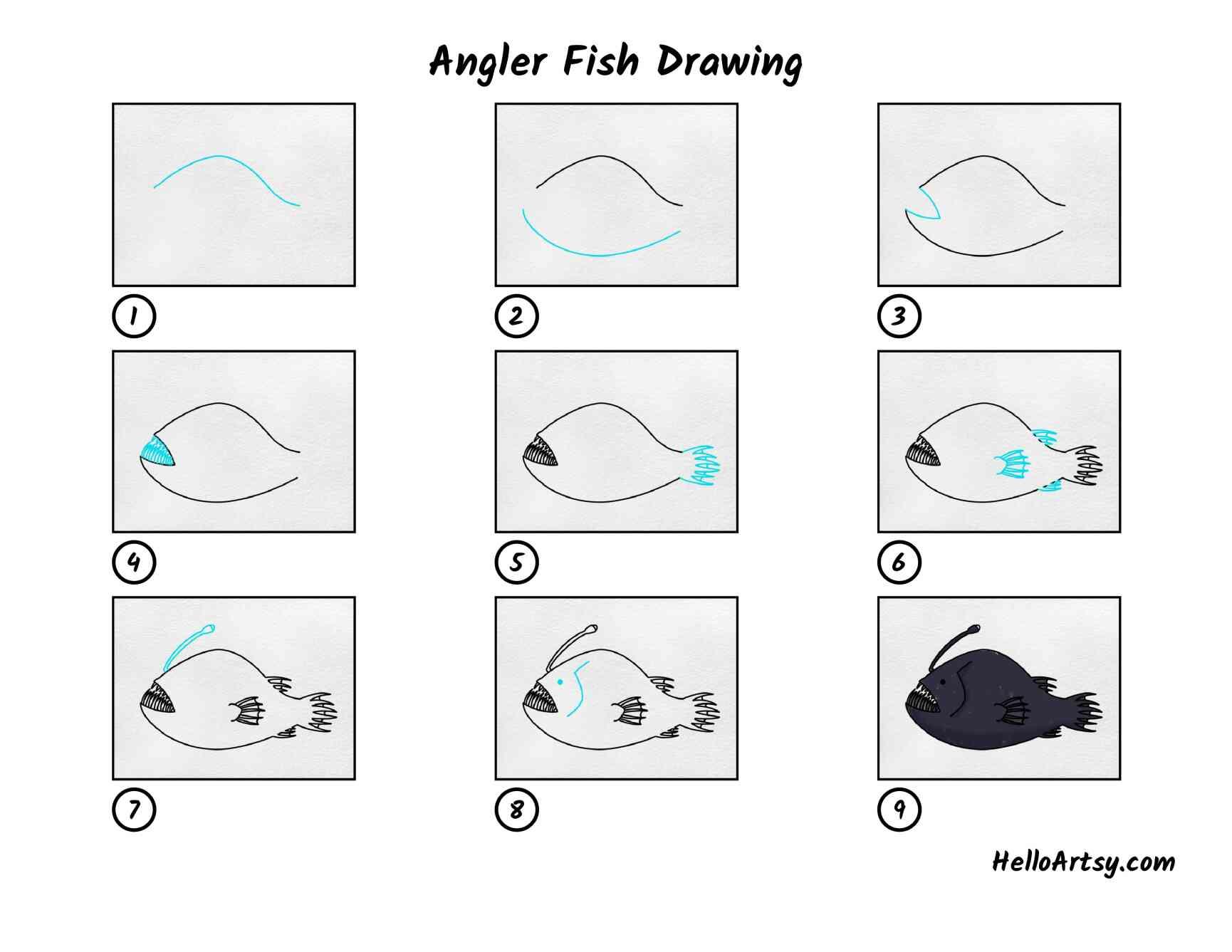 Angler Fish Drawing: All Steps