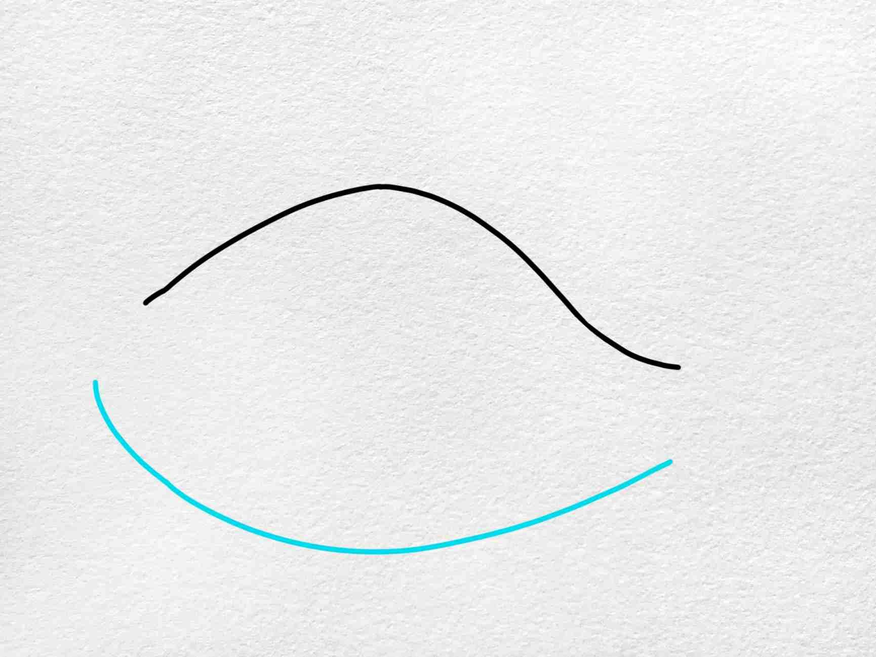 Angler Fish Drawing: Step 2