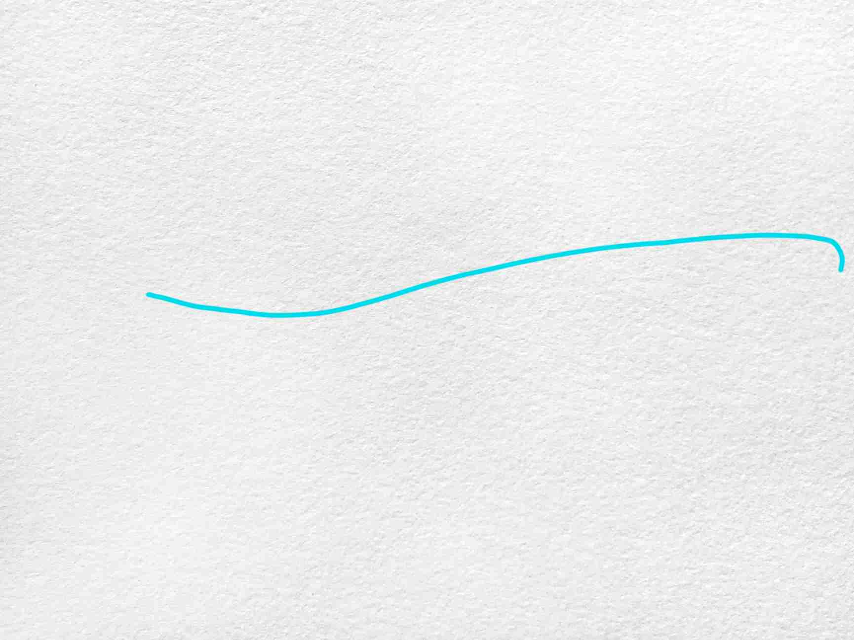 Blue Whale Drawing: Step 1