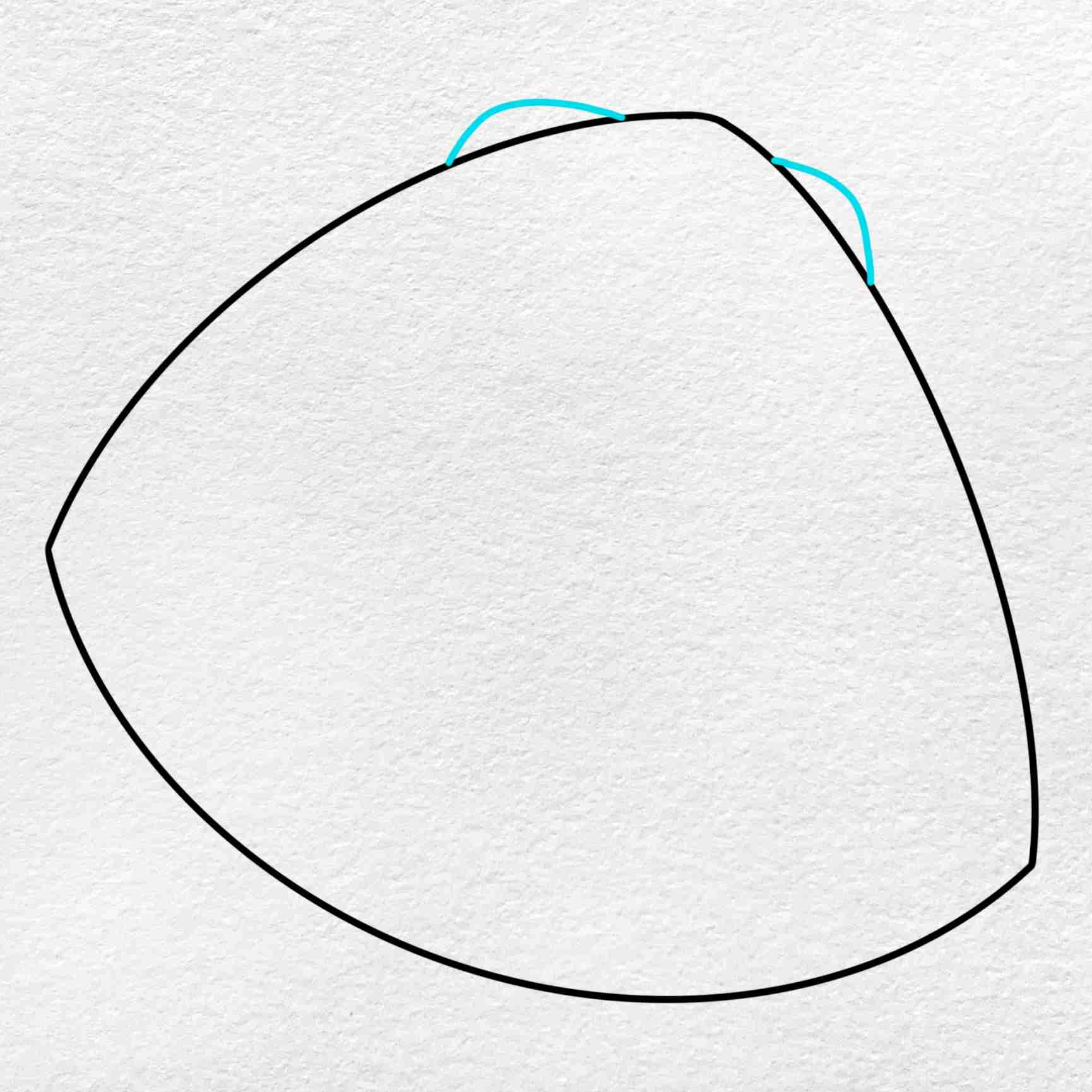 Clam Drawing: Step 3