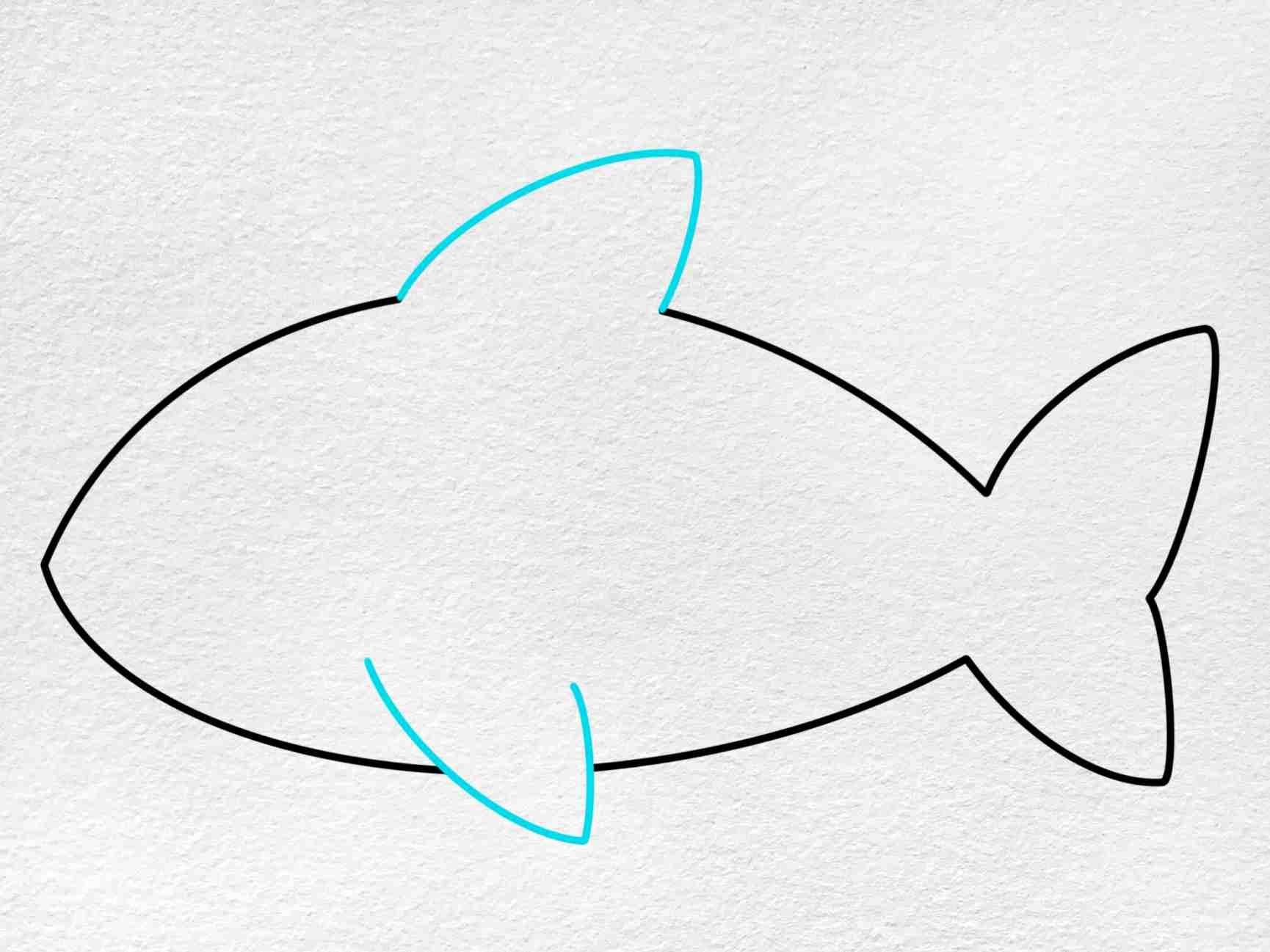 Cute Shark Drawing: Step 4