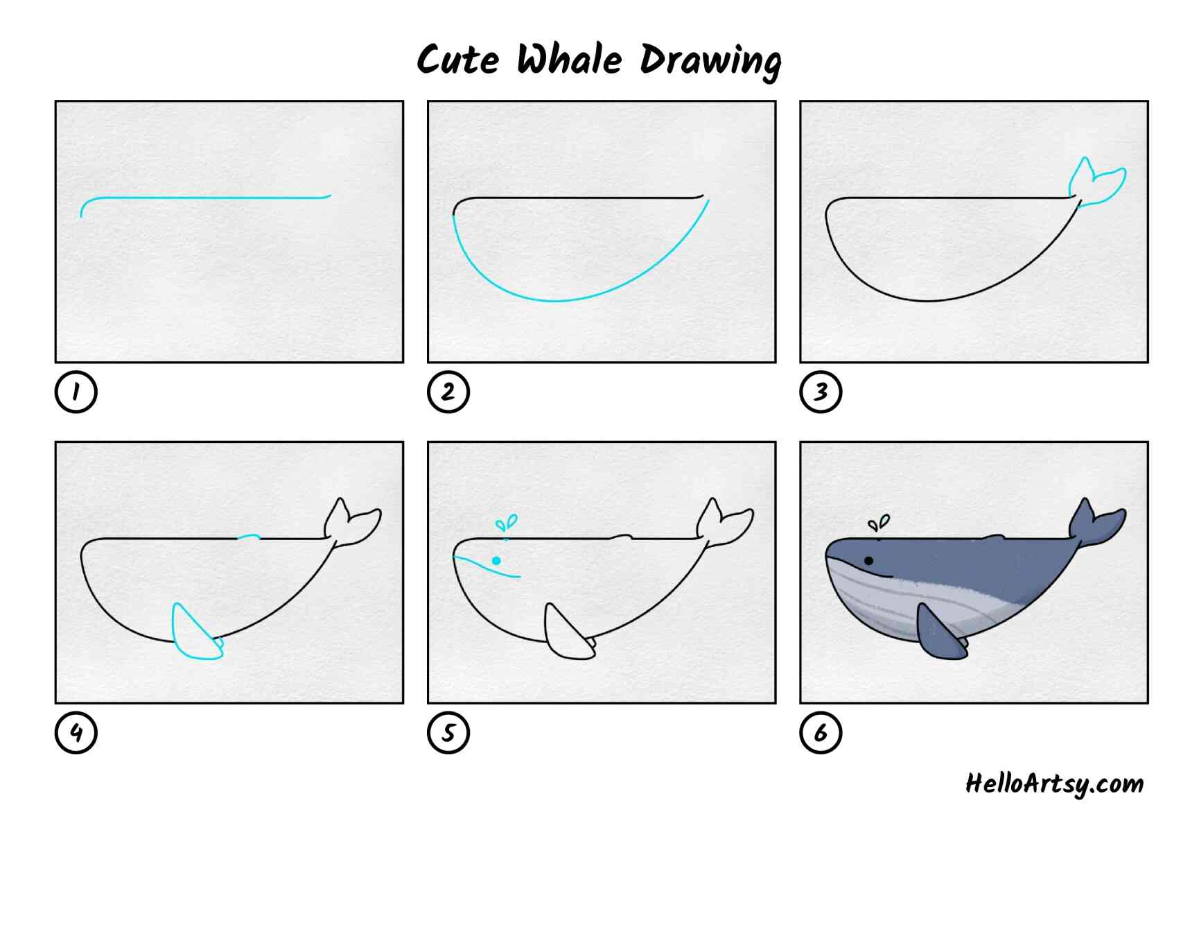 Cute Whale Drawing: All Steps