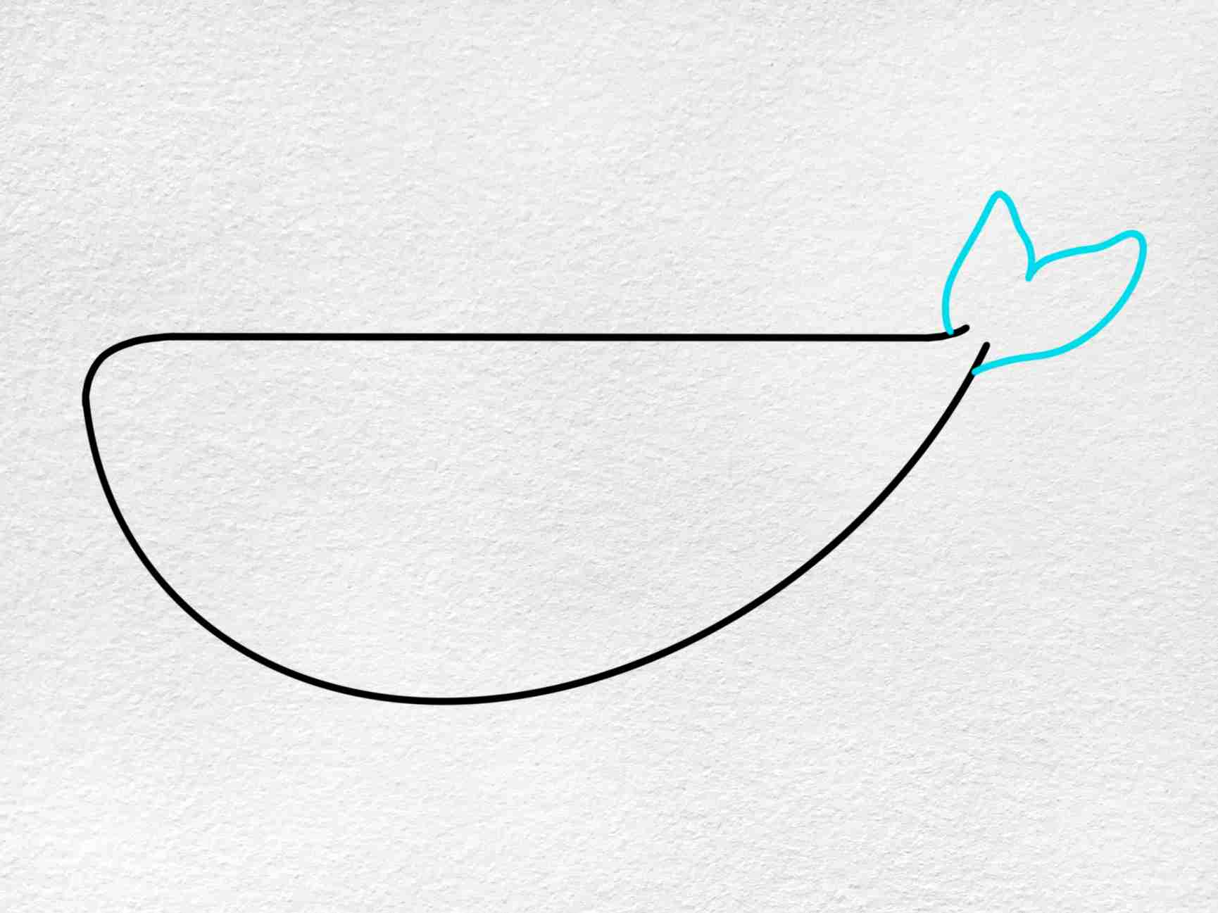 Cute Whale Drawing: Step 3
