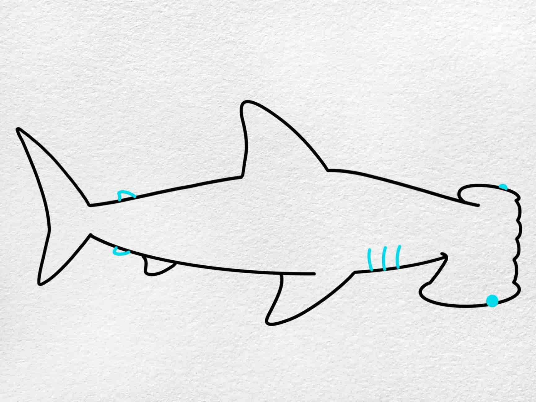 How To Draw A Hammerhead Shark: Step 5