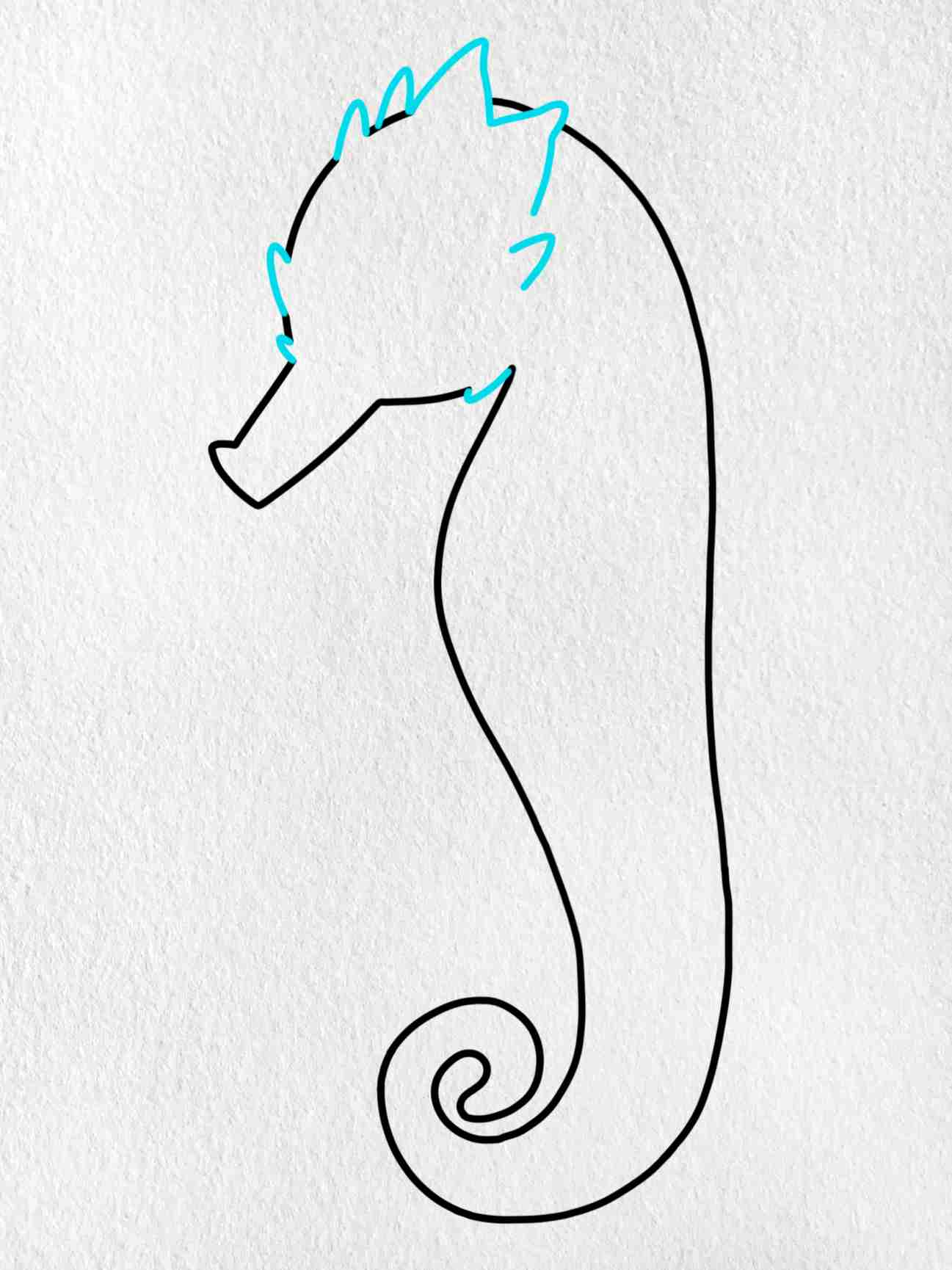 How To Draw A Seahorse: Step 4