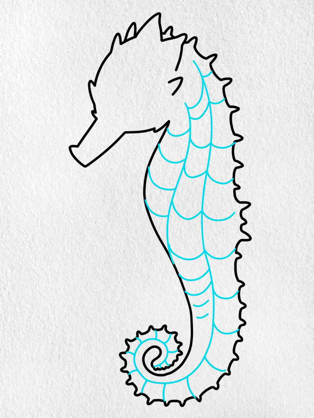 How To Draw A Seahorse: Step 7