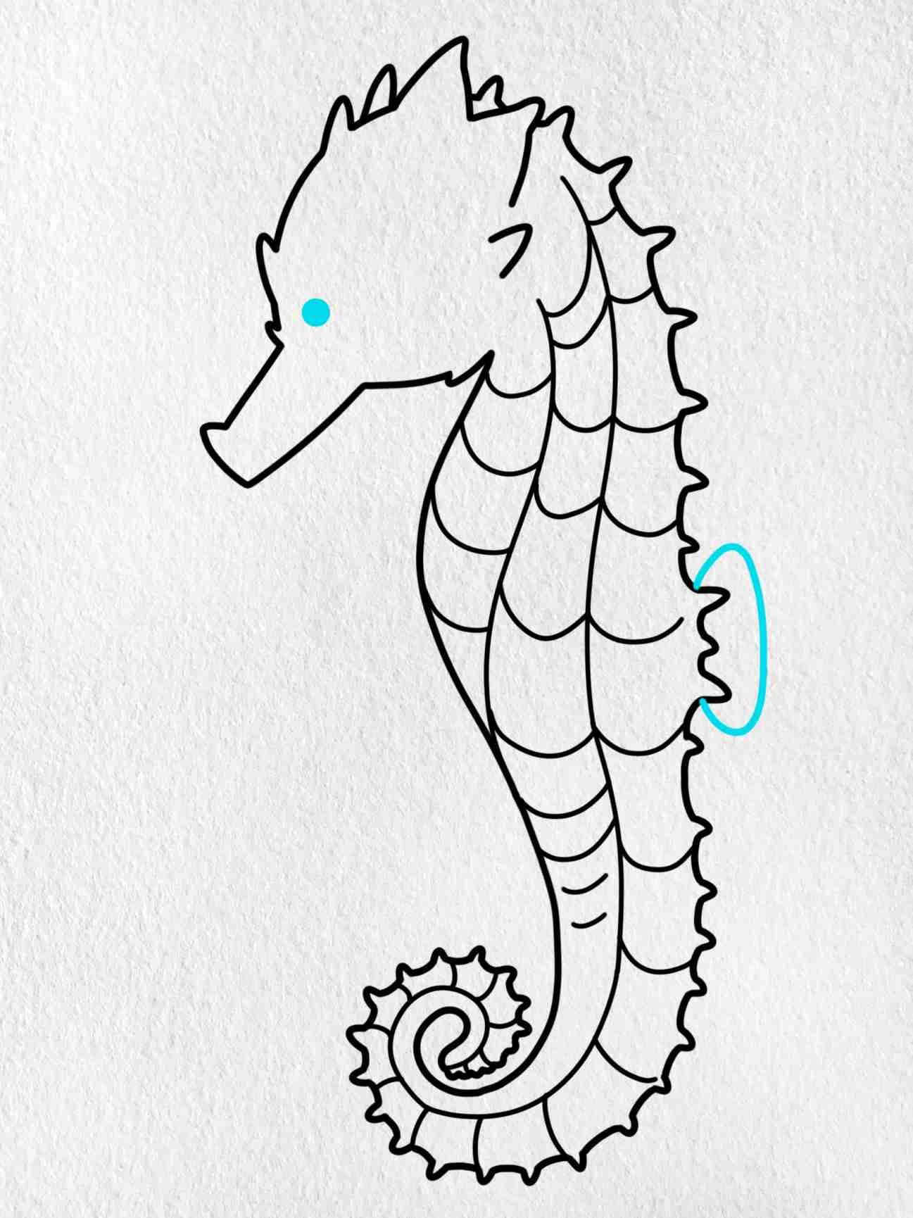 How To Draw A Seahorse: Step 8