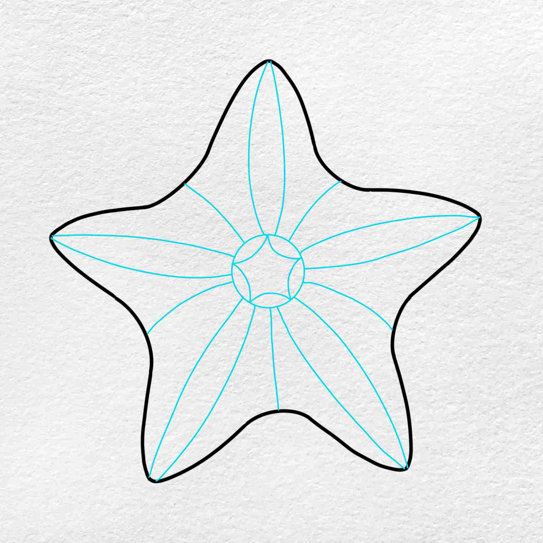 How To Draw A Starfish: Step 3