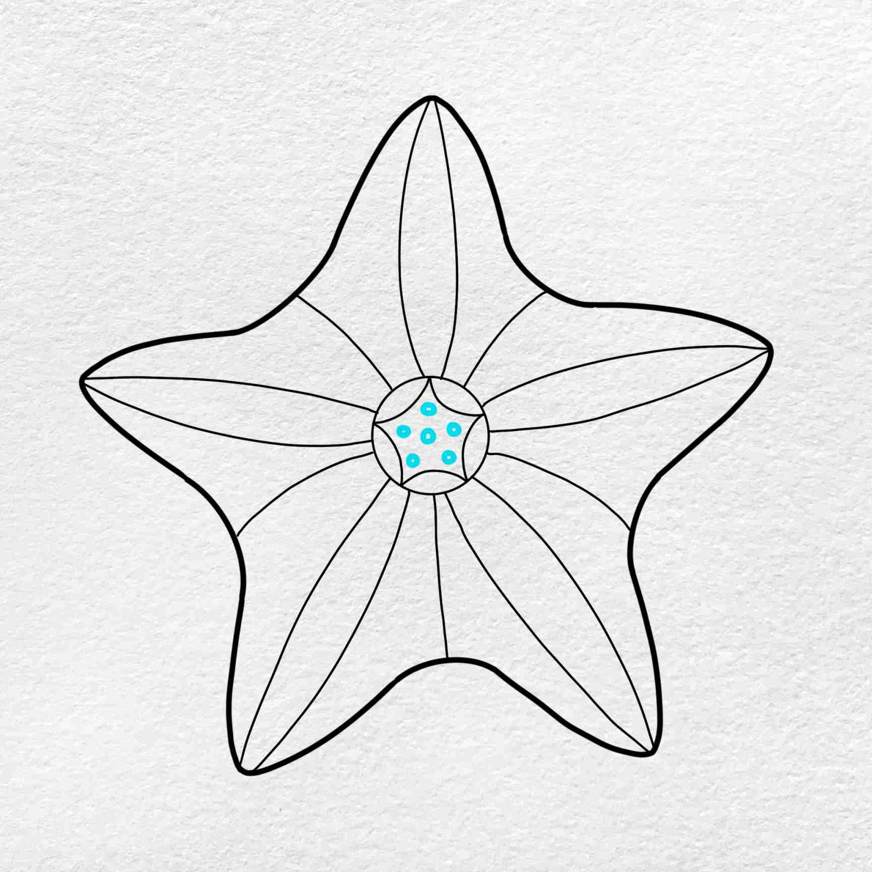 How To Draw A Starfish: Step 4