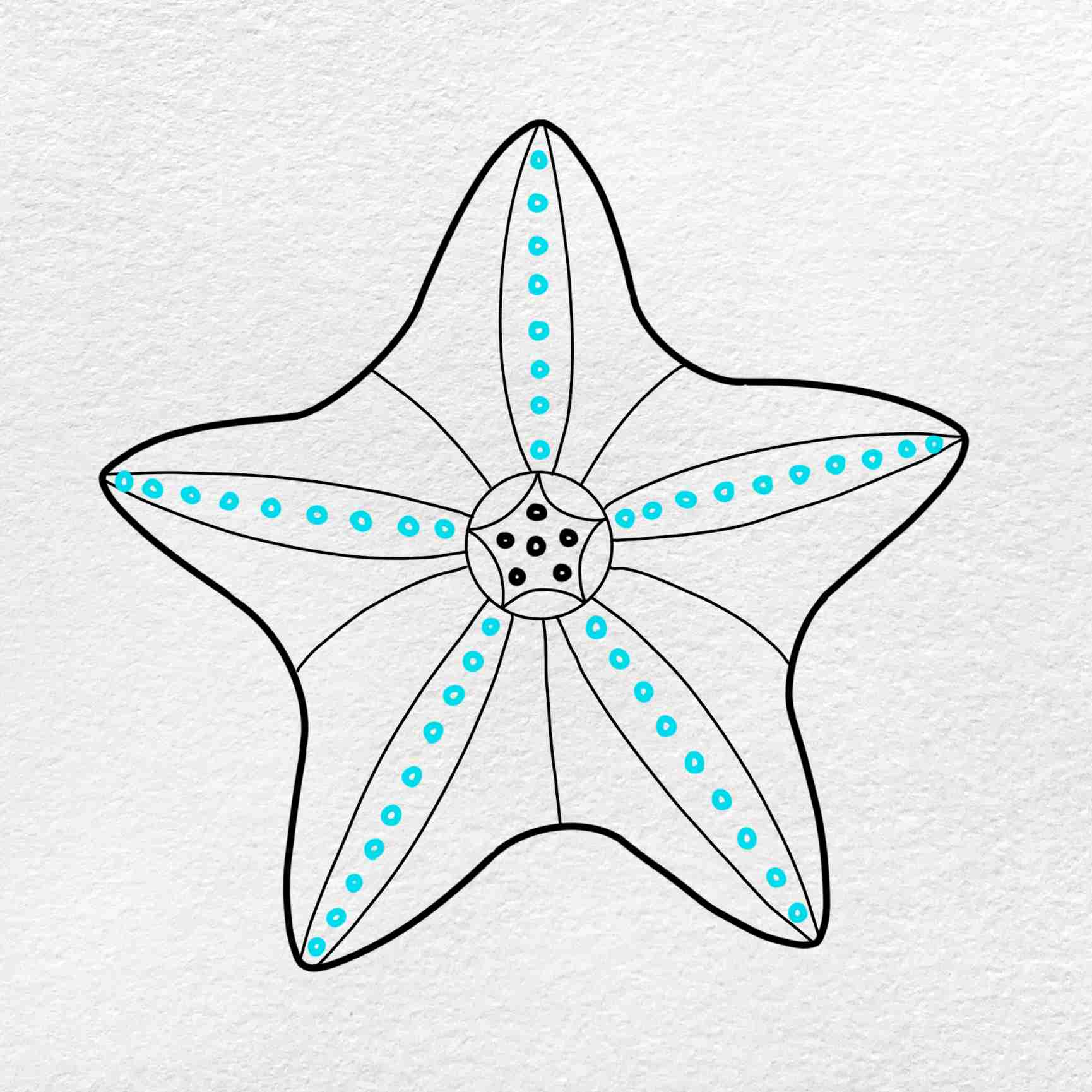 How To Draw A Starfish: Step 5