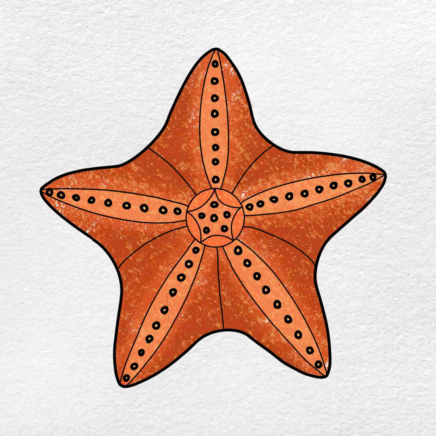 How To Draw A Starfish: Step 6