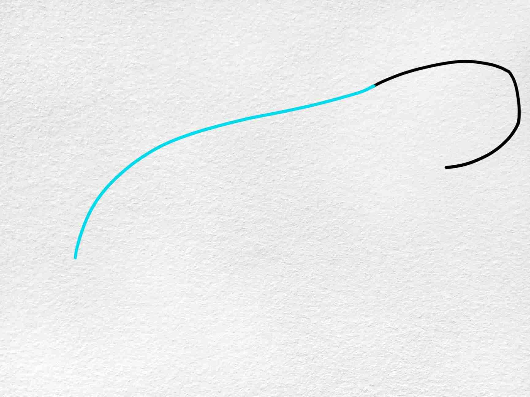 Manatee Drawing: Step 2