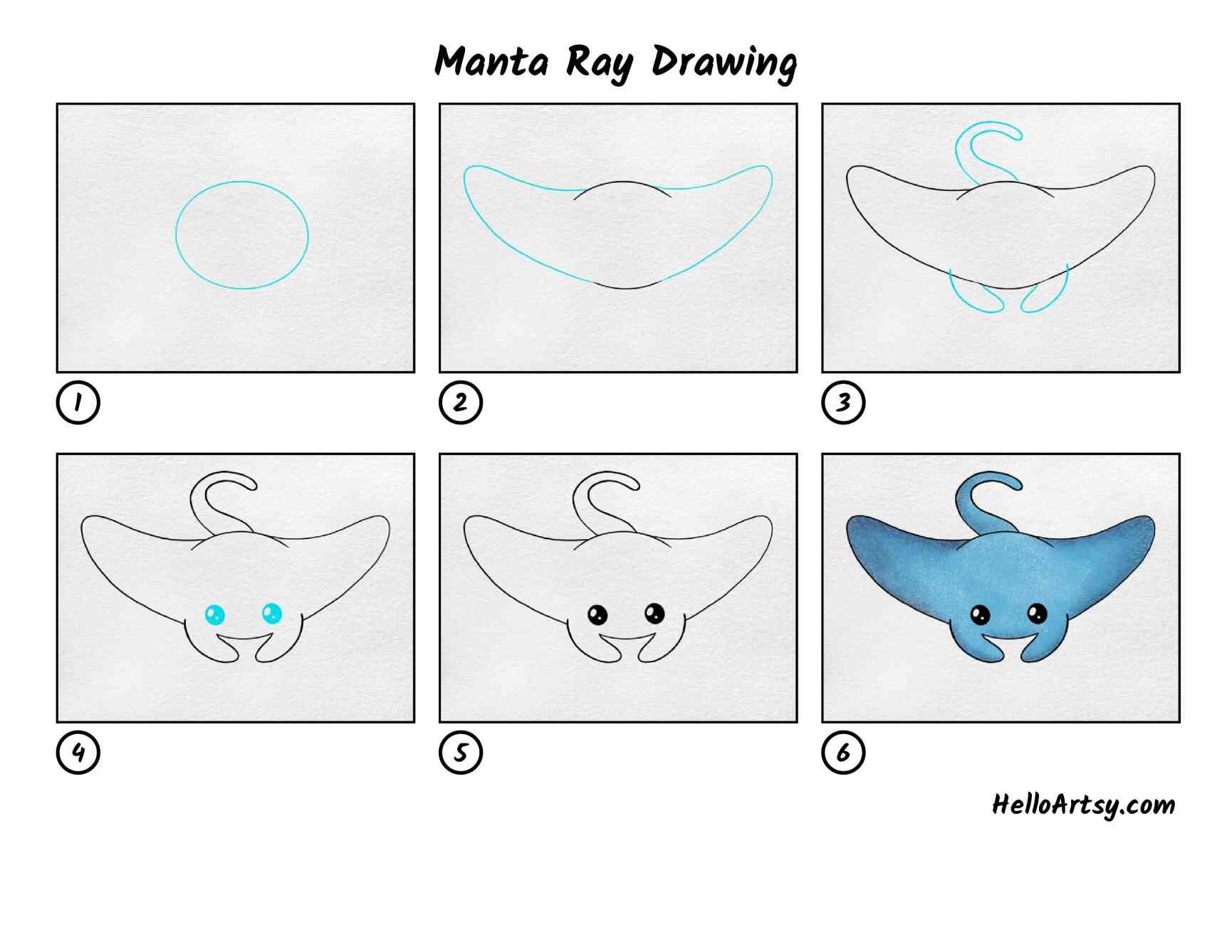 Manta Ray Drawing: All Steps