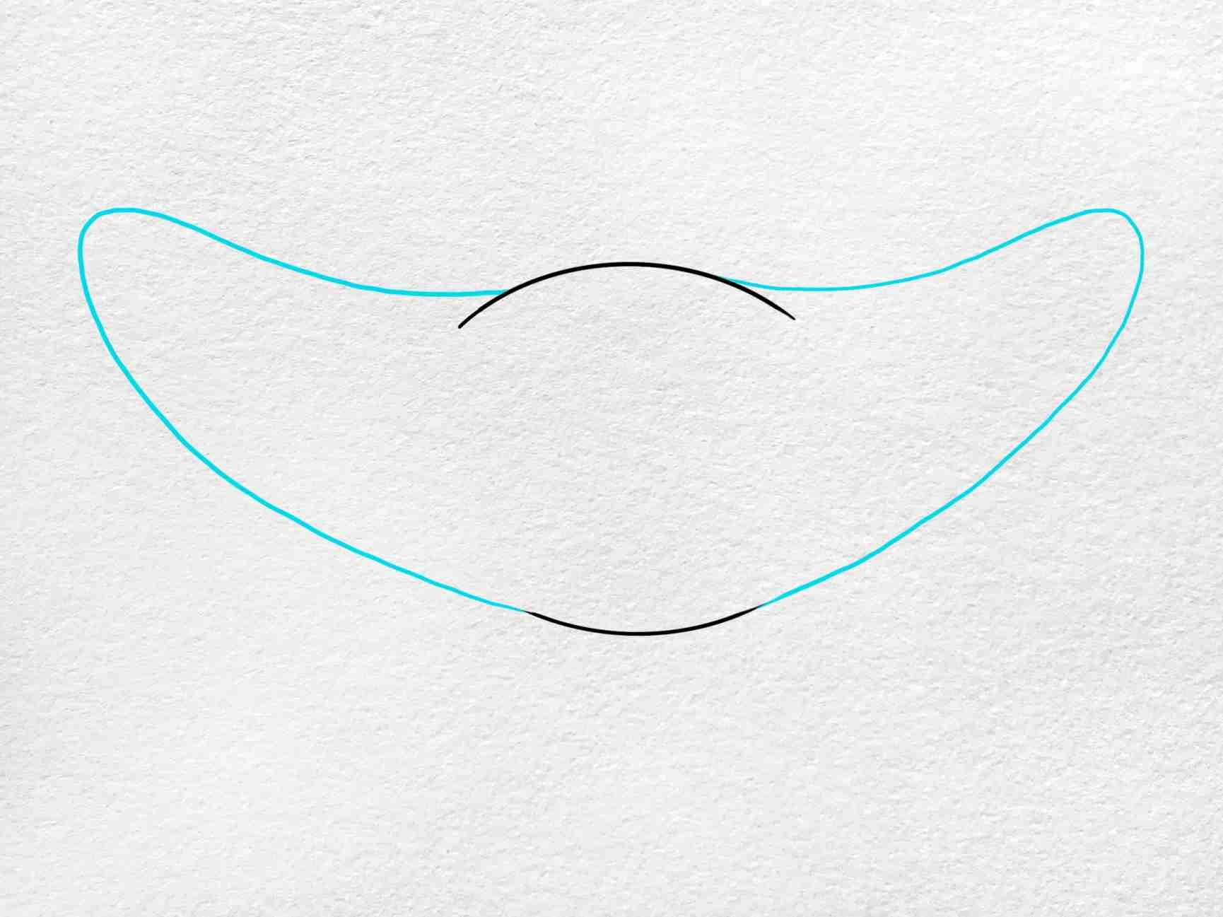 Manta Ray Drawing: Step 2