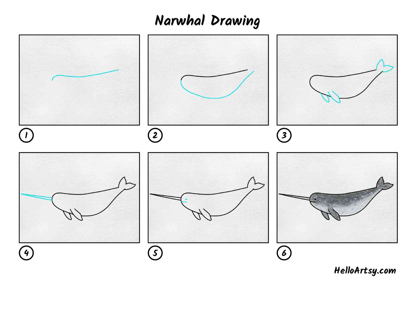 Narwhal Drawing: All Steps