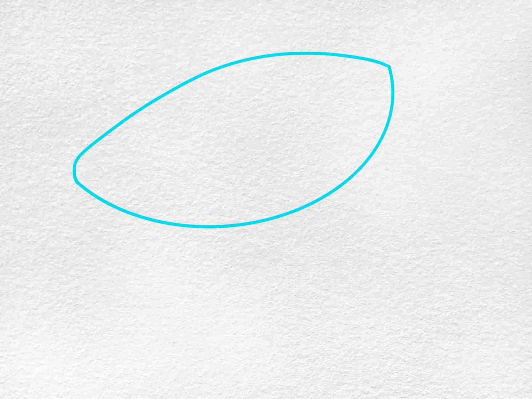 Sea Turtle Drawing Easy: Step 1