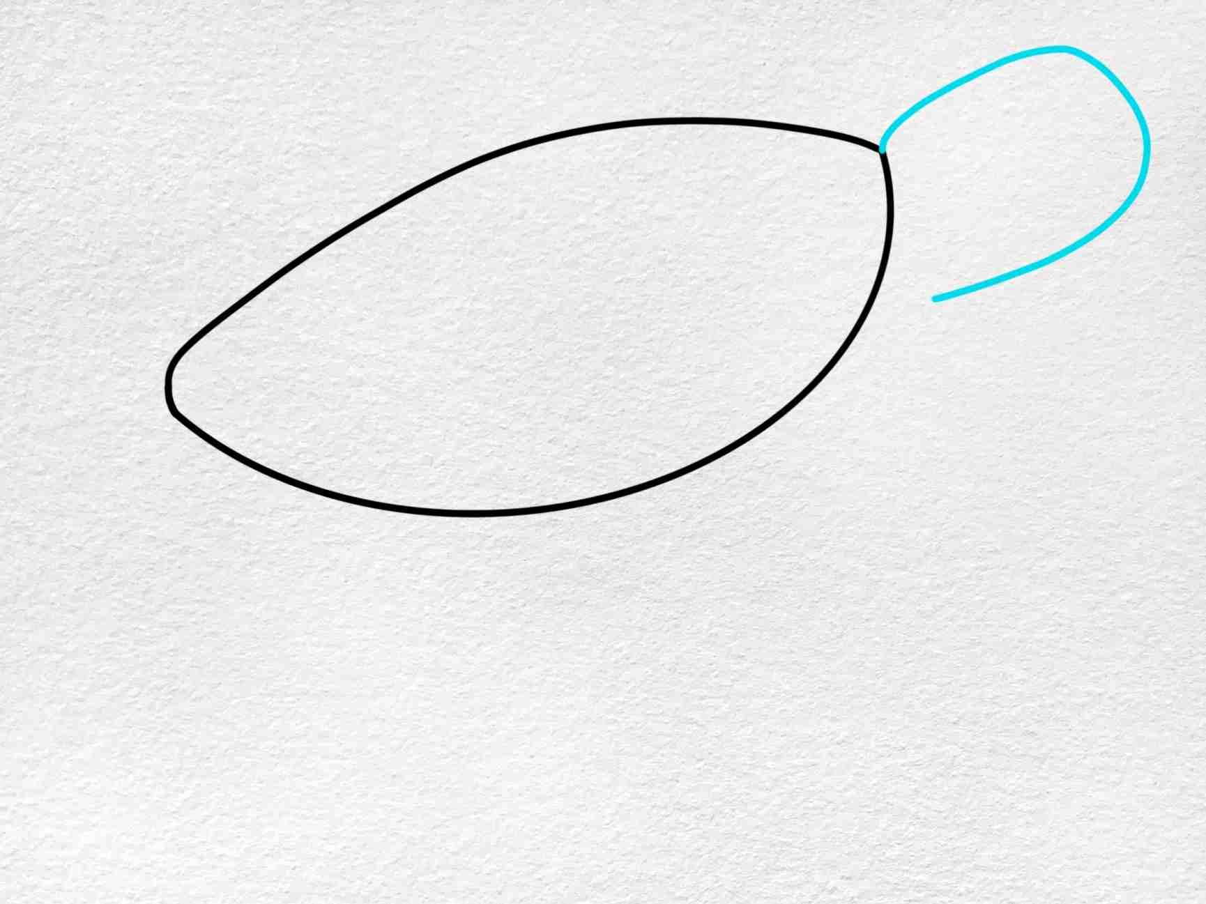 Sea Turtle Drawing Easy: Step 2
