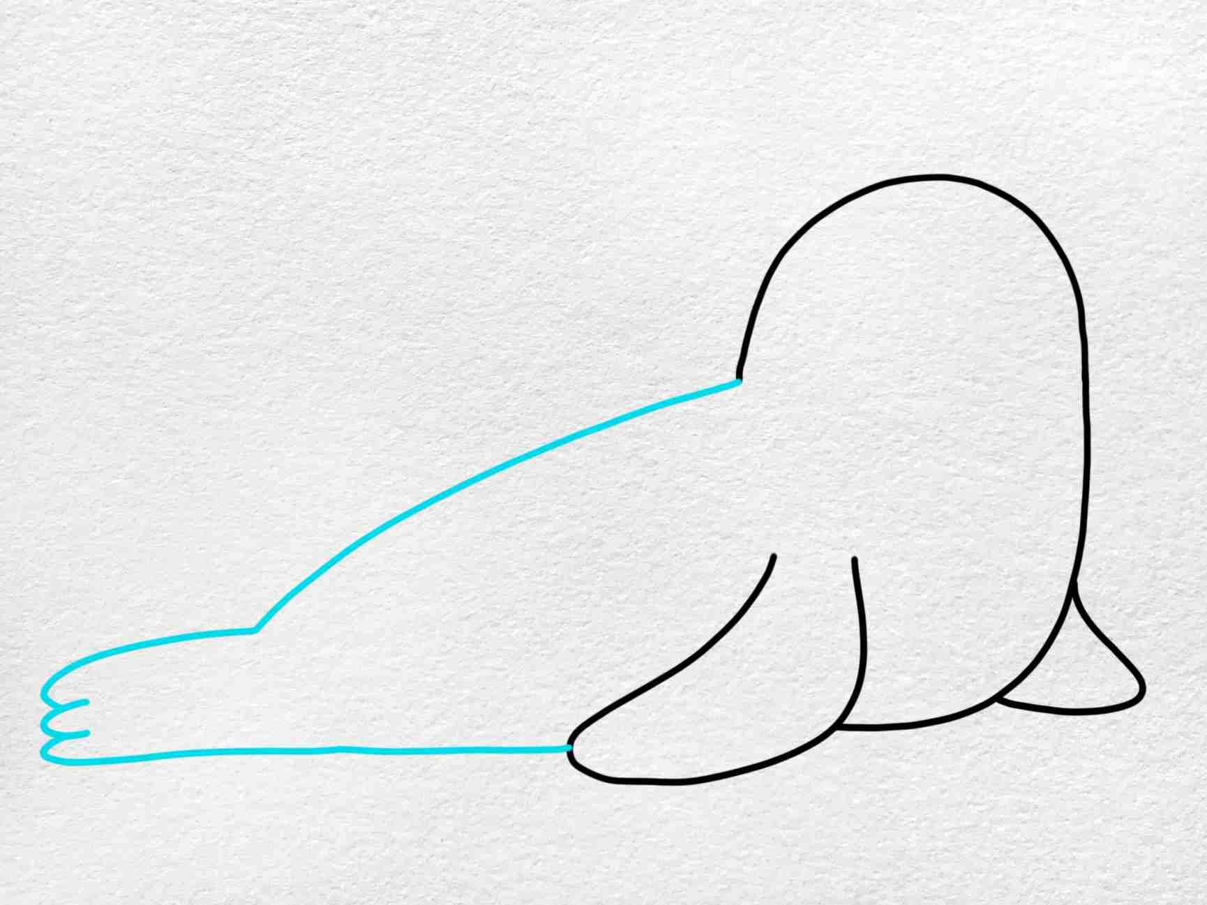 Seal Drawing: Step 3