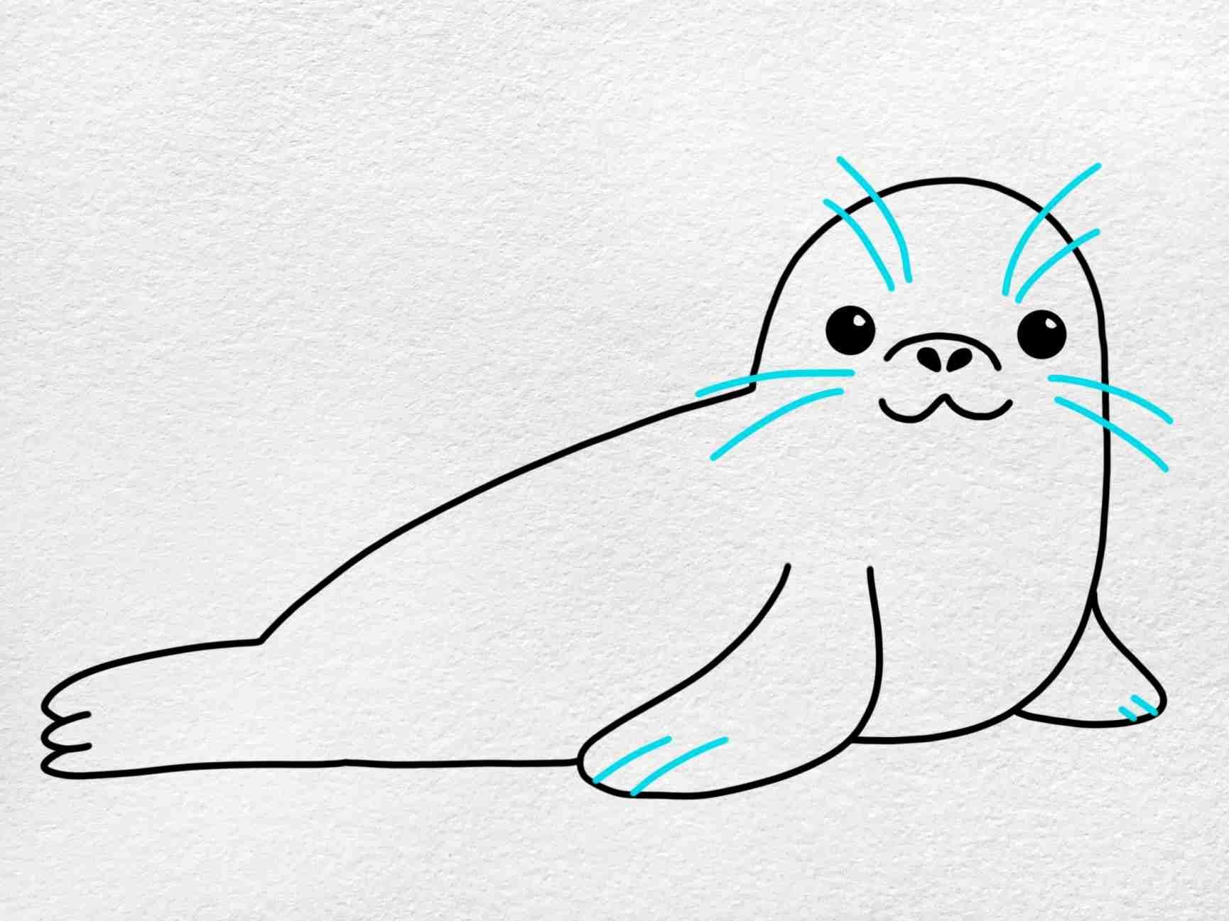 Seal Drawing: Step 5