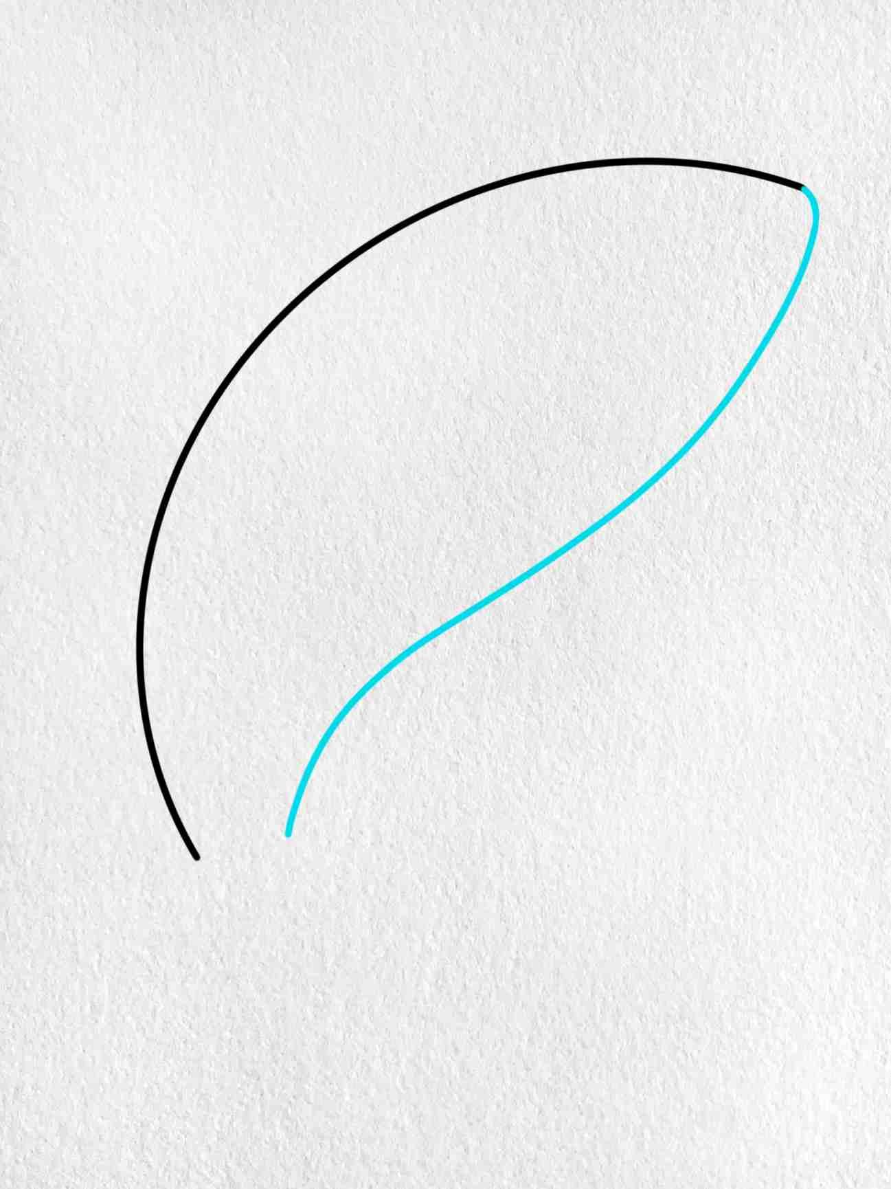 Shark Cartoon Drawing: Step 2