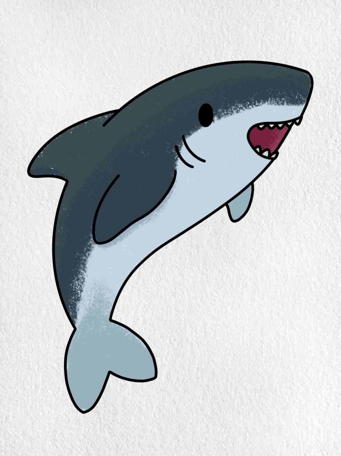 Shark Cartoon Drawing: Step 6